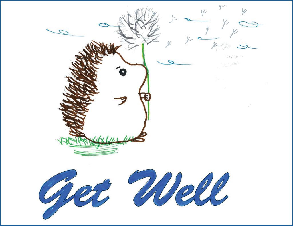 drawing of a hedgehog holding a dandelion