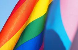 pride flag closeup